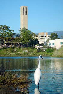 UCSB Storke Tower from lagoon